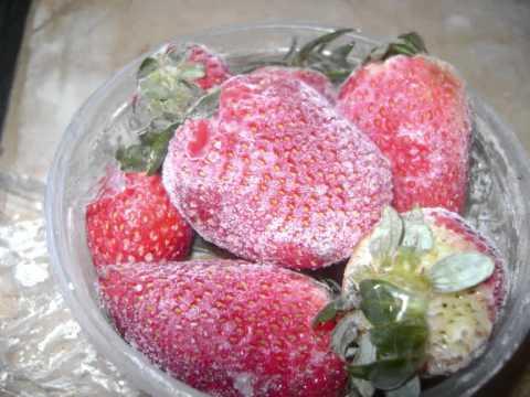 se puede congelar las fresas