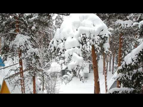 Пансионат с лечением Чайка Ивановская область