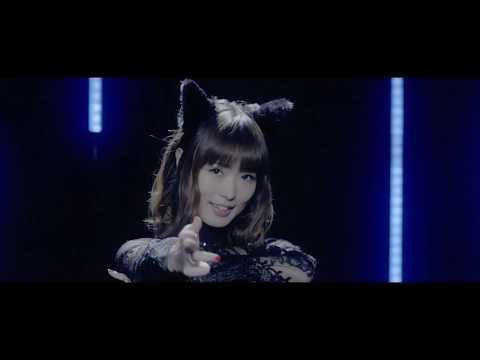 渕上 舞 「BLACK CAT」