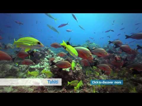 Trip Guide Tahiti