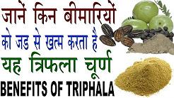 एक साथ कई बीमारियों का इलाज करता है यह त्रिफला | Health Benefits Of Triphala In Hindi