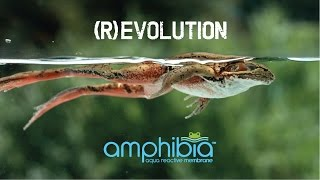 Amphibia by Volteco, (R)Evolution in Waterproofing