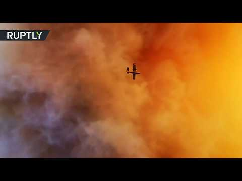 Some 120 firefighters battle a large forest wildfire in Greece's Euboea