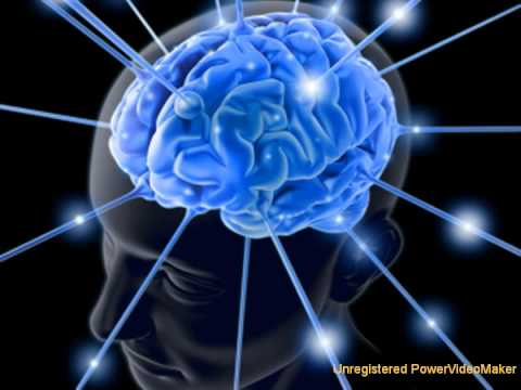 human inteligence