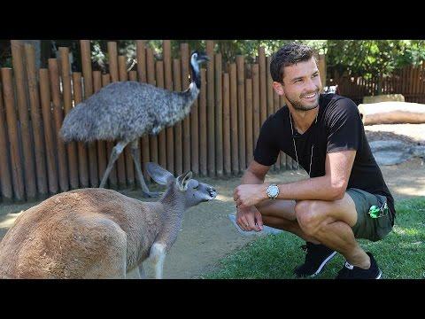 Dimitrov Visits Taronga Zoo Sydney 2016