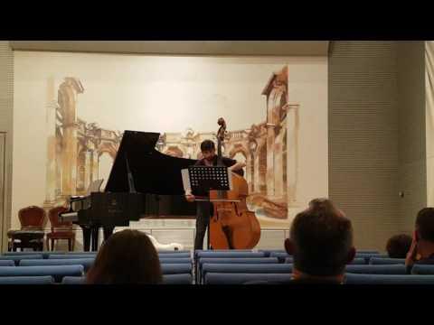David Paulis - Bach - Cello Suite No.2 - Prelude in A minor
