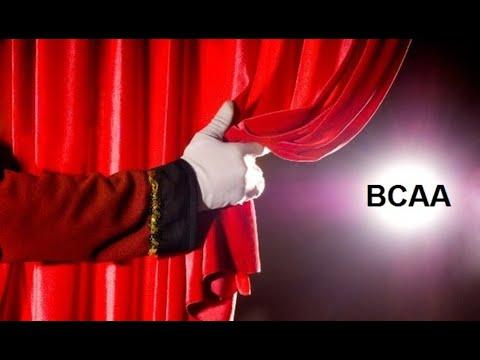 В сети магазинов mega mass вы можете купить activlab bcaa 100% 400г по выгодно низким ценам в украине. Доставка всего 1-2 дня. Сертификаты.