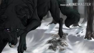 Anime Wolves~ How you Remind Me