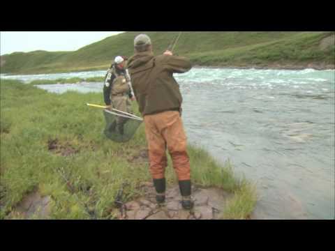Arctic Char, Plummer's Lodge Tree River NWT   Csf 24 22 01