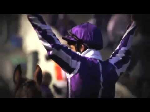 Breeders' Cup - Wave Your Flag