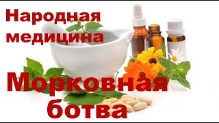 Лечение ботвой и семенами моркови. Польза и вред морковной ботвы. Морковное масло. Рецепты