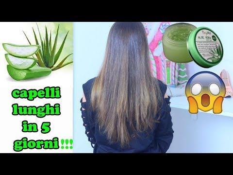 Applicati Aloe vera sui capelli per 5 giorni, risultati incredibili!