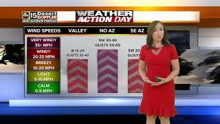 Windy day throughout Arizona