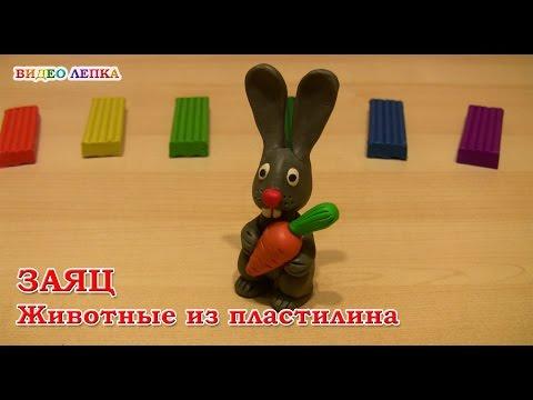 Заяц из пластилина своими руками