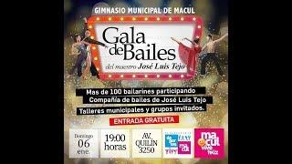 Gala de Bailes 2019