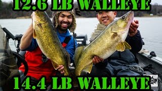 [episode] Epic Monster Fall Walleye Bay Of Quinte 2014