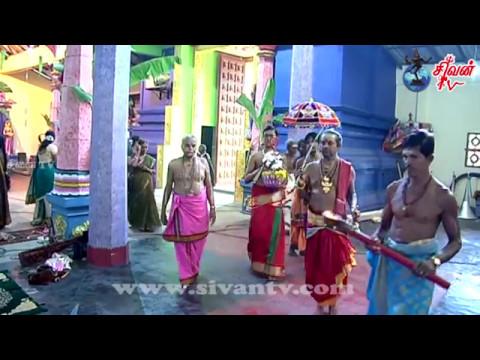 mavidapuram veeniyavarai amman ther