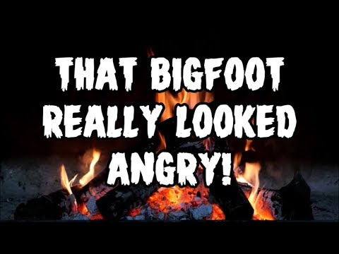 THAT BIGFOOT REALLY LOOKED ANGRY!