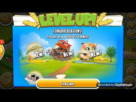 Hay Day / Level Up 56