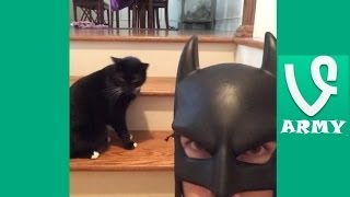 BatDad | The Best Bat Dad VINES Compilation 2013  Part 2 [HD]