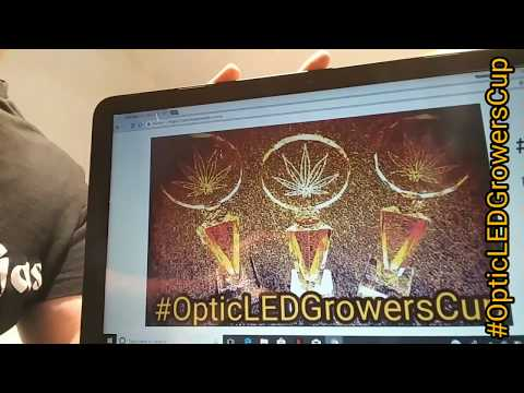 #OpticLEDGrowersCup - Update - Shout outs - LED Talk