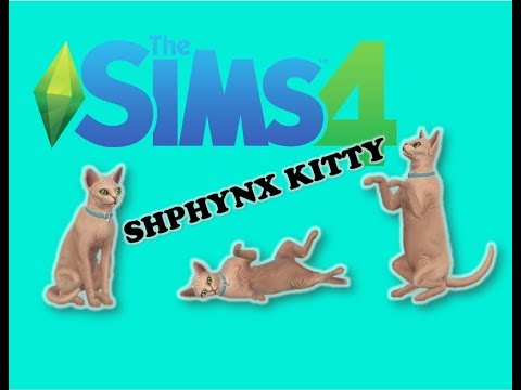 SPHYNX CAT| Let's play sims 4|EP 1