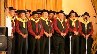 Cante alentejano, Grupo Coral Adega da Vidigueira,