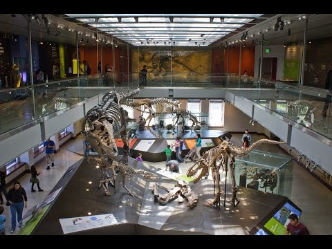 10 Best Science Museums In The World