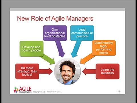 Agile Managers   We've disrupted your role