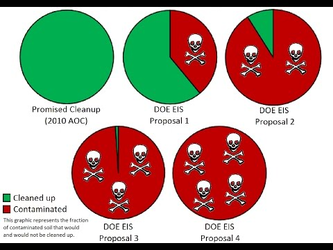Analysis of the Dept. of Energy's Draft Environmental Impact Statement for SSFL