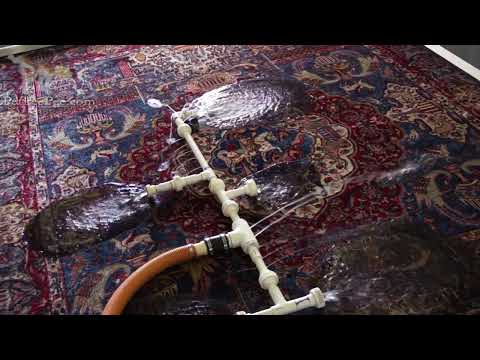 Cleaning Oriental rug from dog urine odor