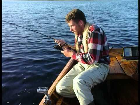 Das carolina rig f r barsch und zander 39 exitus fishing for Carolina fishing tv