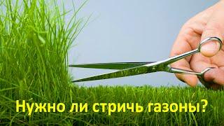 Нужно ли стричь газоны? Правильный газон(, 2016-06-28T17:05:25.000Z)