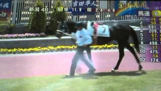 2014/5/11新潟4R サラ系障害4歳以上 2890m 芝 外内(混合) 未勝利