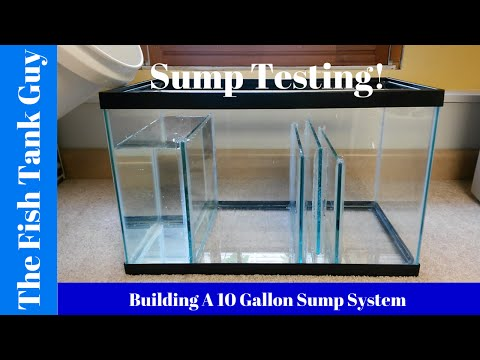 Building A 10G Sump System (Sump Testing)