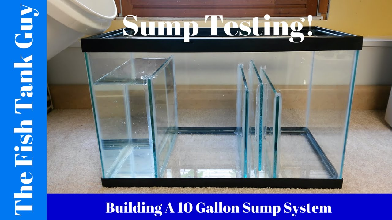 Building A 10g Sump System Sump Testing Youtube
