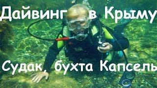Дайвинг на Чёрном море.  Обучение дайвингу, Чёрное море, Крым, Судак. Дайвинг в Крыму
