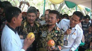 PERTANIAN INDONESIA HARUS MAJU MENATAP KEDEPAN DAN BERDAULAT