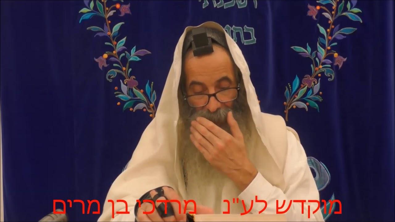 זוהר בקטנה פרשת כי תצא ליום ו' מפי רבי יעקב יוסף כהן