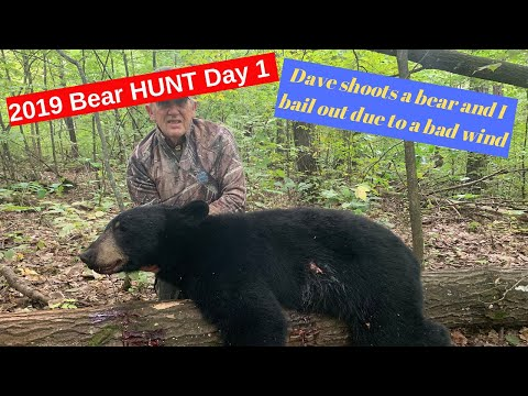 Minnesota Bear Hunting Day 1, Dave Gets His Bear