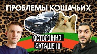 Как выбрать Jaguar F-Pace, если у тебя лапки