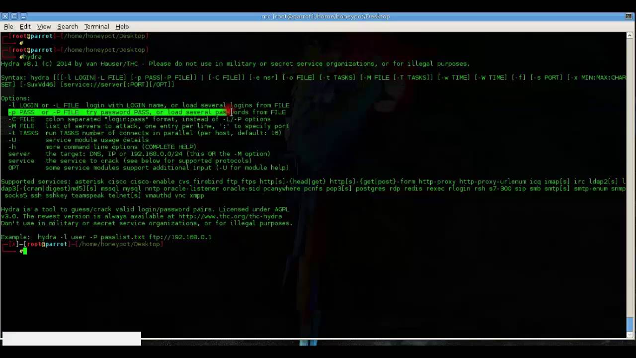 thc hydra http brute force