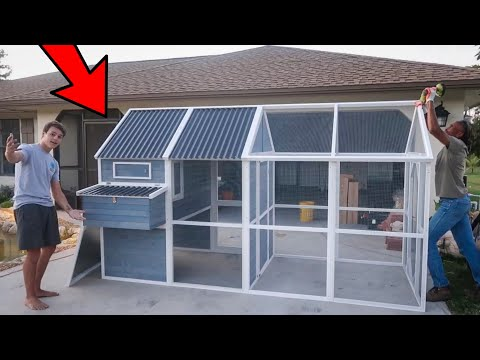 My *NEW* CHICKEN COOP Is HERE!!