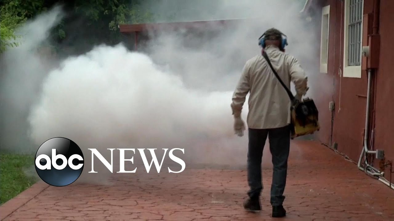 84 Pregnant Women Test Positive for Zika in Florida
