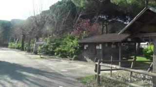 Motorhome parking in Cervia, Emilia Romagna, Italy