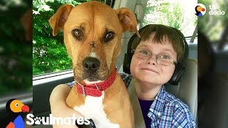 Boy And Rescue Dog Have The Most Remarkable Bond - XENA THE WARRIOR PUP | The Dodo Soulmates