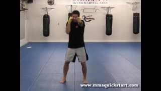Beginner MMA - Basic Punching Motion