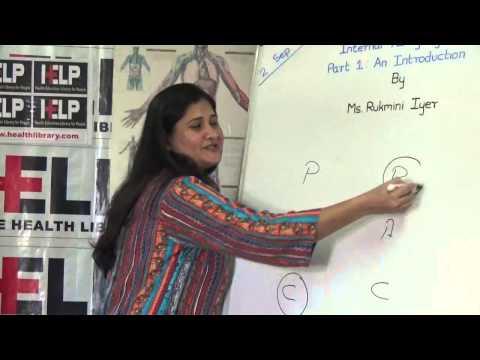 Short HELP Talk: Transactional Analysis Conversation