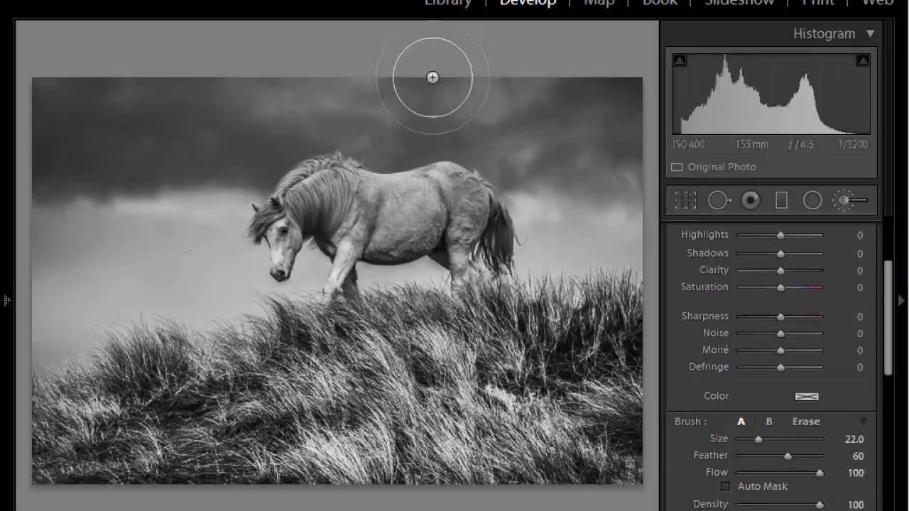 Lightroom tutorial how to create moody black white photos