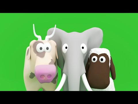 Names and sounds of animals and more for toddlers and babies(like flash cards)